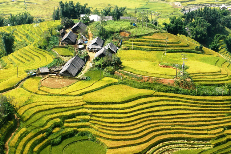 SAPA - 4 nights and 3 days (2 nights in the hotel)